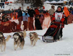 2006 Iditarod Restart by Jan DeNapoli